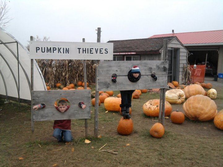 pumpkin school tour pic