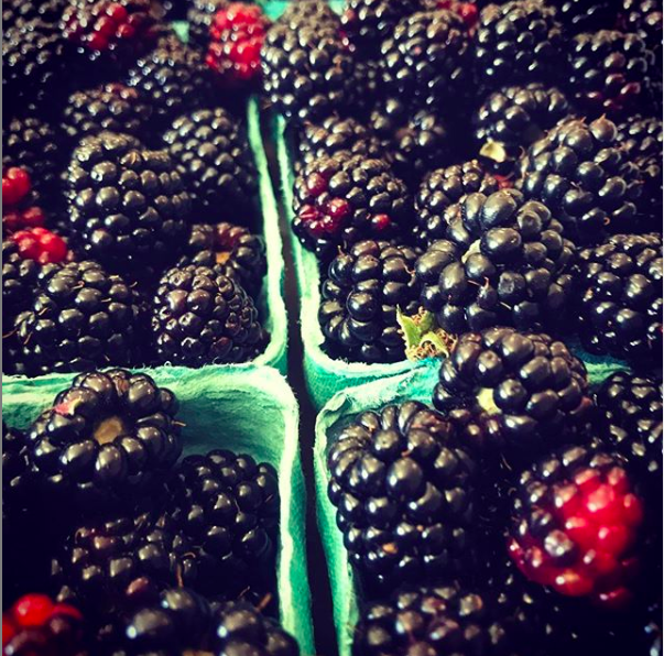 img for Blackberries