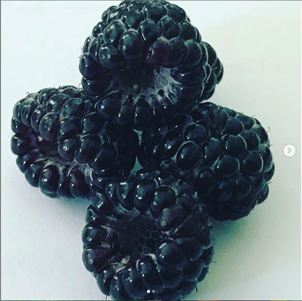 img for Black Raspberries